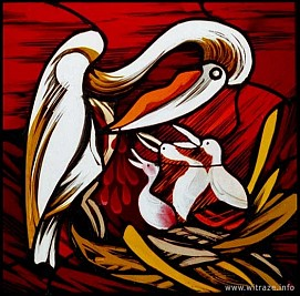 Window 7 Scene 1 - Pelican - Symbol of Christ